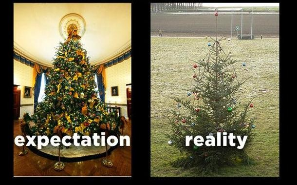 memey.com-funny-christmas-trees-expectation-vs-reality-610x379