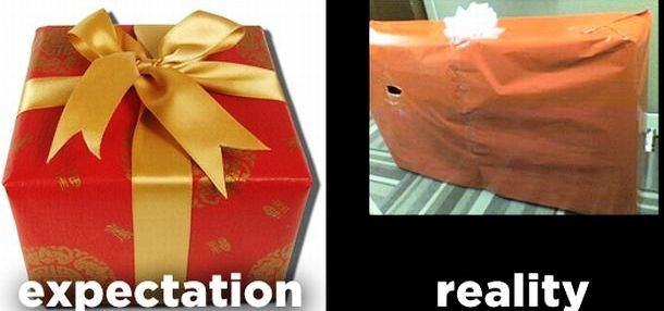 www.viralands.com-holiday_expectations_vs_reality_10-610x286